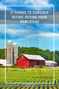 17 Things to Consider Before Buying Your Homestead
