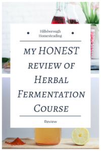 herbal academy of new england herbal fermentation review