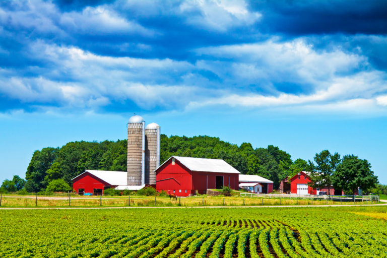 17 Things to Consider When Buying Your Homestead,