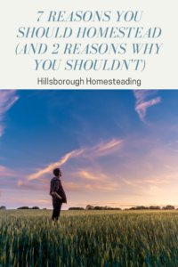 reasons to homestead or life skills for being more self sufficient