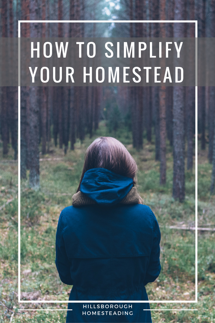 How to simplify your homestead