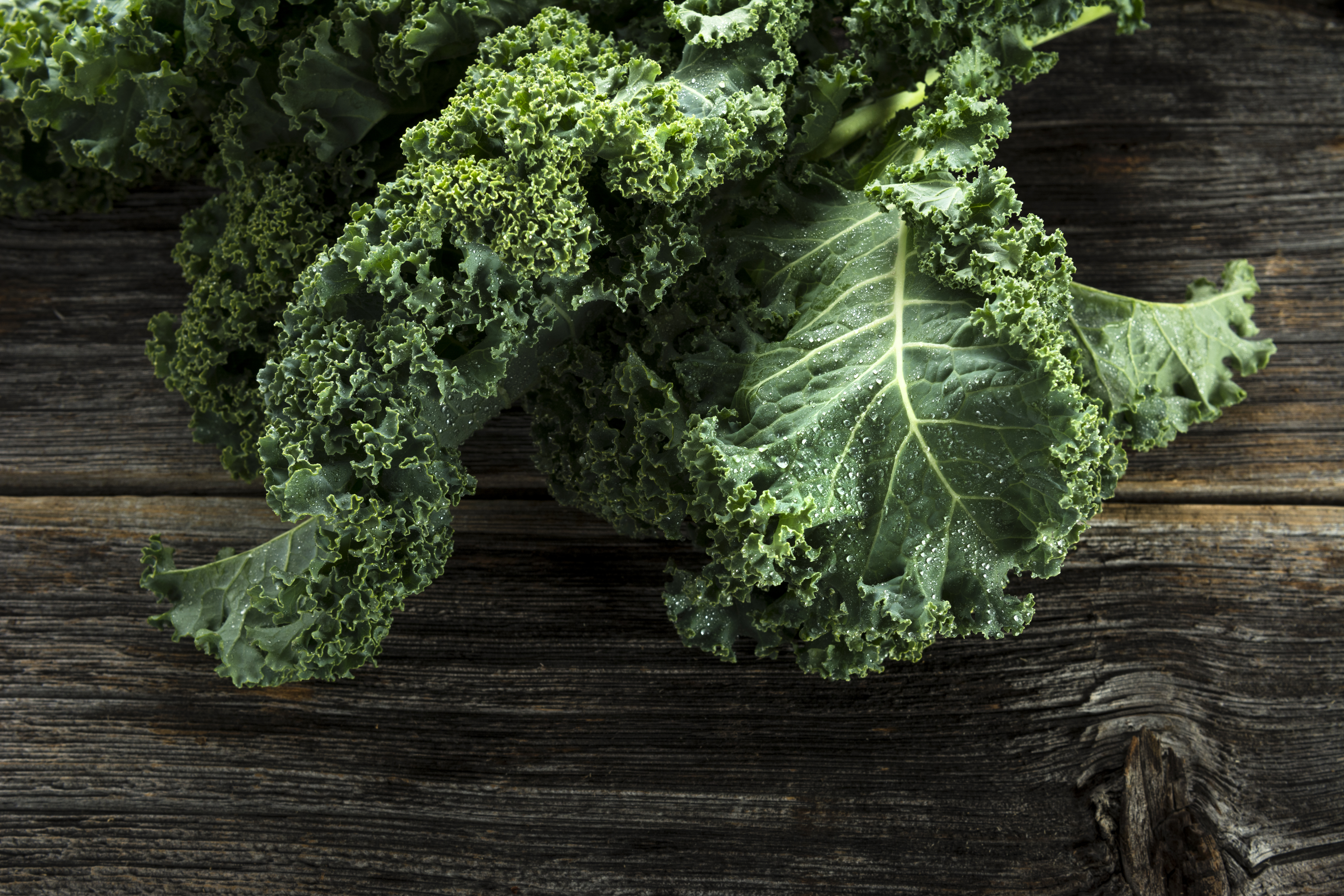 3 Quick and Easy Ways to Preserve Kale