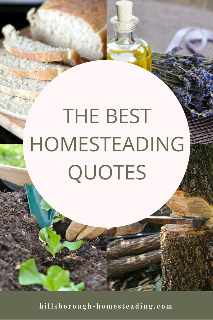 best homesteading quotes (2)