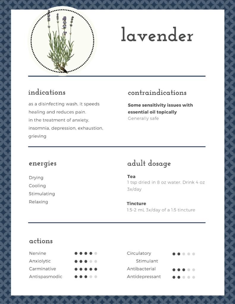 lavender monograph infographic