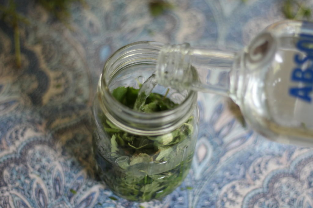 How to make folk tincture