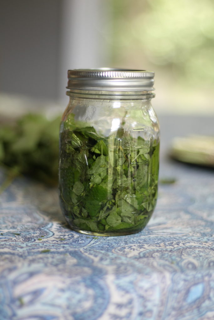 How to make herbal tincture with alcohol