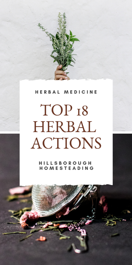 Top 18 medicinal actions for herbal remedies