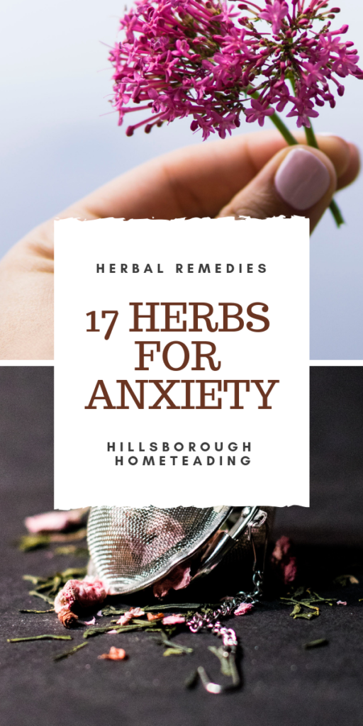 herbs to treat anxiety symptoms