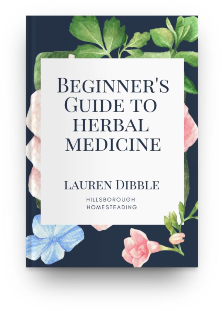 Beginners Guide to Herbal Medicine and Tincture