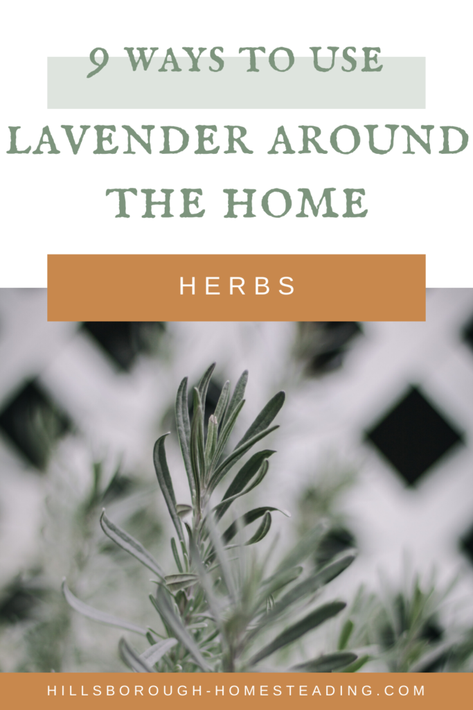 easy ways to use lavender