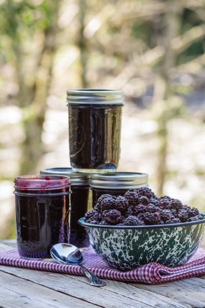 several jars of blackberry jam