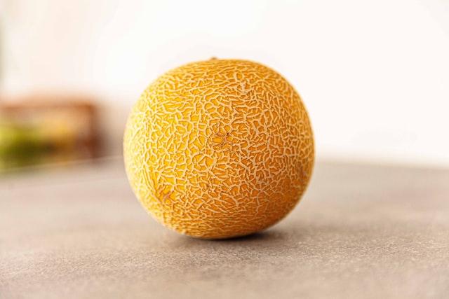 honey dew melon