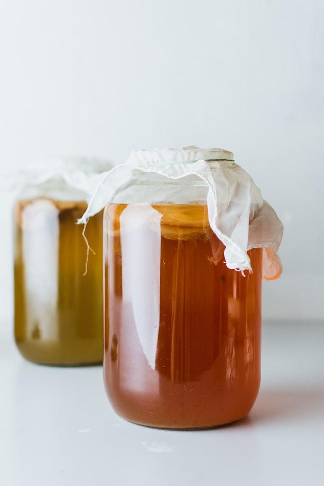 two glass gallon jars full of kombucha