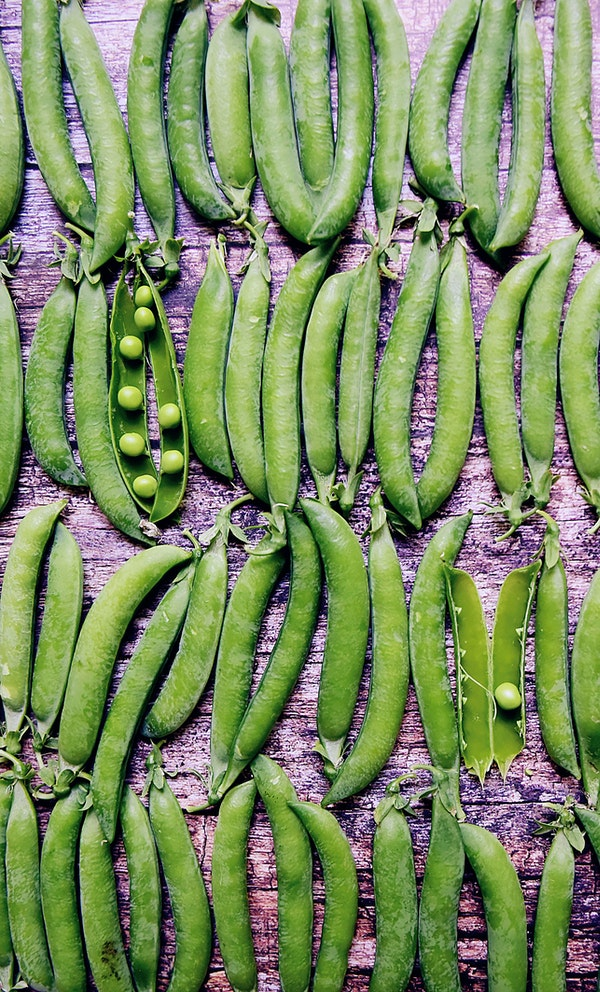 pea pods laid out on a tabl