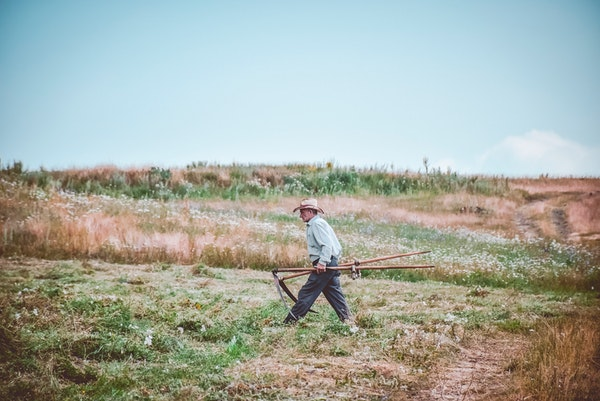 Your Guide To Hiring Employees For Your Homestead