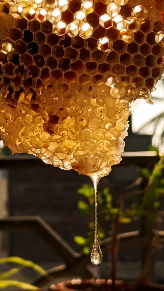 make homey homesteading with bees