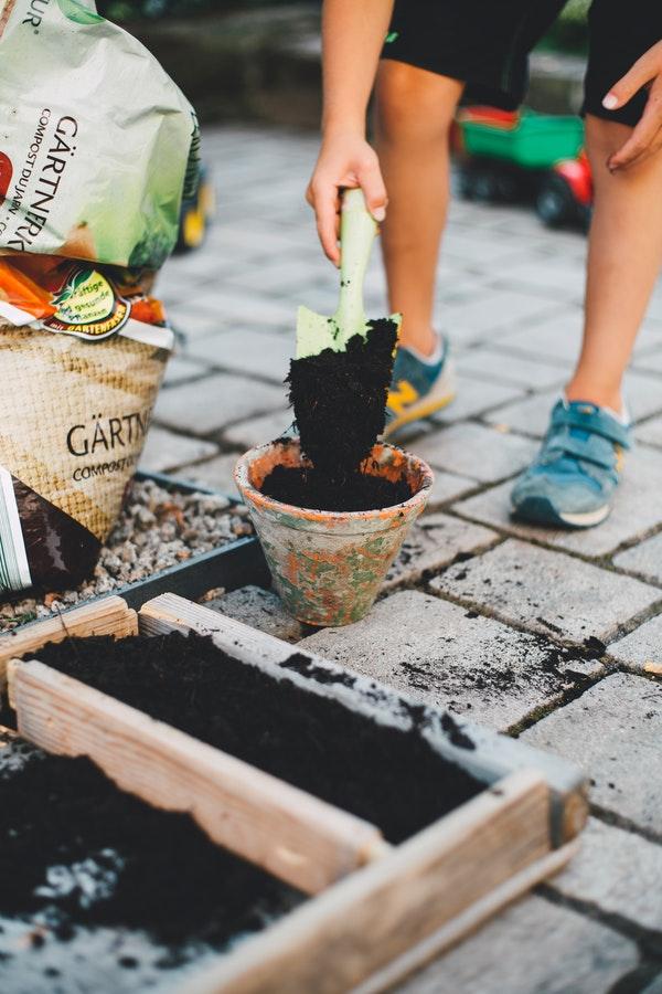 Preparing Your Garden for Spring Time