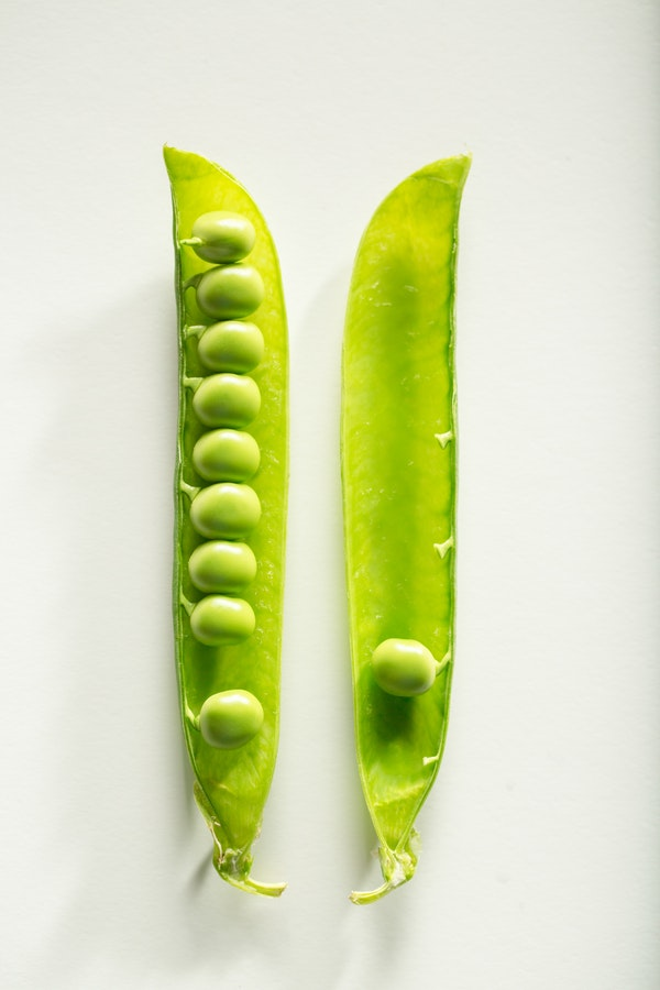 a pea pod in two