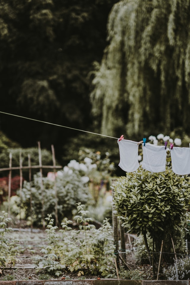 laundry hanging on a line