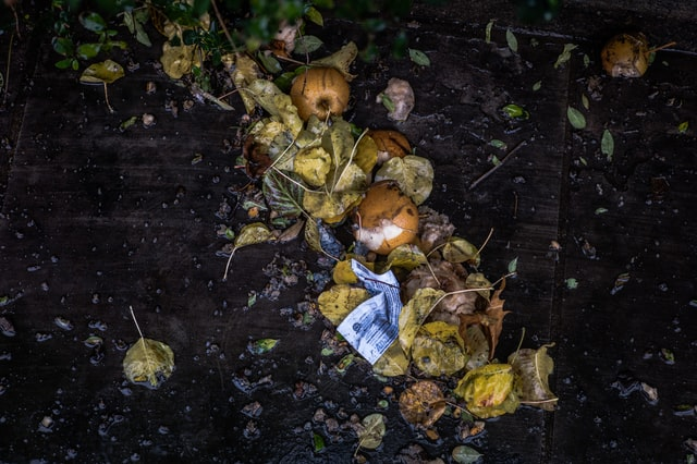 a compost pile with food scraps and leaves