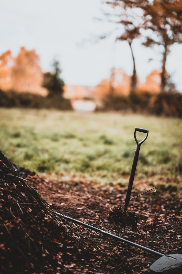 How to Start a Compost Pile From Scratch
