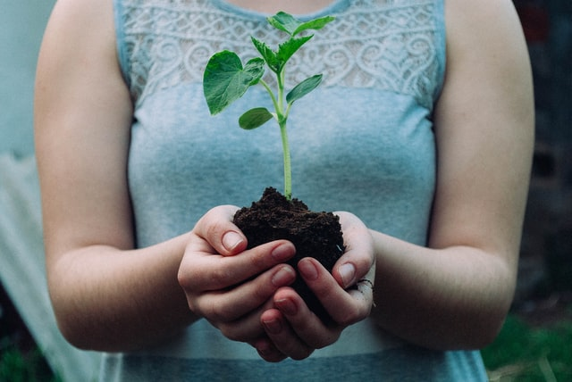 a woman holding a seedling and topsoil vs compost
