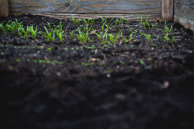 compost and topsoil to build the perfect garden