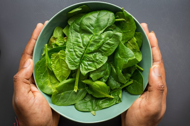 a bowl full of spinach grown from seed
